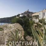 Viviendas en el barrio de Sa Penya de cara al mar Mediterraneo. Ciudad de IBIZA. Islas Baleares. Mar Mediterraneo. España