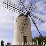Molino en la zona de Puig des Molins. Cerca del casco historico de la ciudad de IBIZA. Islas Baleares. España