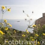 Atardecer sobre la ciudad de IBIZA, desde el baluarte de Sant Jaume al fondo. Islas Baleares. España