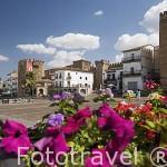 La Plaza Mayor. CACERES. Ciudad Patrimonio de la Humanidad. Extremadura. España