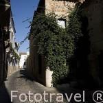 Hospital de los Caballeros, s.XVI al XVII. En la calle Puerta de Mérida. CACERES. Ciudad Patrimonio de la Humanidad. Extremadura. España