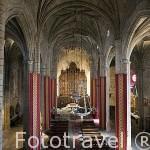 Interior de la concatedral de Santa María. s,XIII, gótica. CACERES. Ciudad Patrimonio de la Humanidad. Extremadura. España