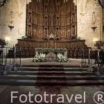 Retablo del altar mayor, renacentista en madera de cedro. Alonso Torralba,1525. Concatedral de Santa María. s,XIII, gótica. CACERES. Ciudad Patrimonio de la Humanidad.Extremadura. España