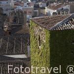 Torre de los Sande o de los Plata, s.XIV y la ciudad de CACERES. Ciudad Patrimonio de la Humanidad. Extremadura. España