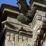 Detalle en la cornisa de la iglesia de San Mateo,s.XVI. CACERES. Ciudad Patrimonio de la Humanidad. Extremadura. España