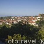 VALVERDE DE VERA. Provincia de Caceres. Extremadura. España - Spain