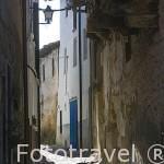 Estrecha calle y gatos. VALVERDE DE VERA. Provincia de Caceres. Extremadura. España - Spain