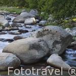 Riachuelo en la garganta de Puente de Cuartos, cerca de LOSAR DE VERA. Provincia de Caceres. Extremadura. España - Spain