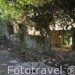 Antiguo piedra del molino de agua junto al Puente de Cuartos, cerca de LOSAR DE VERA. Provincia de Caceres. Extremadura. España - Spain
