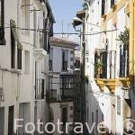 Calle. Población de JARAIZ DE LA VERA. Provincia de Caceres. Extremadura. España - Spain