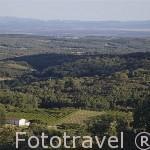Campos de cultivo cerca de JARANDILLA DE LA VERA. Provincia de Caceres. Extremadura. España - Spain