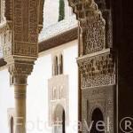 Taca. Patio de los Arrayanes. La Alhambra, UNESCO. Ciudad de GRANADA. Andalucia. España