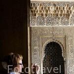 Una taca. Palacio de los Leones. La Alhambra, UNESCO. Ciudad de GRANADA. Andalucia. España