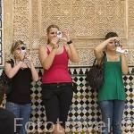 Portico del Cuarto Dorador.Palacio de Comares. La Alhambra,UNESCO. Ciudad de GRANADA. Andalucia. España