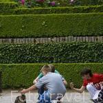 Chicos y gato en los jardines del Partal. La Alhambra, UNESCO. Ciudad de GRANADA. Andalucia. España