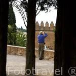 Paseo de las Torres. La Alhambra,UNESCO. Ciudad de GRANADA. Andalucia. España