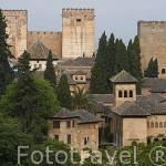 La Alhambra,UNESCO la zona de los palacios Nazaries. Ciudad de GRANADA. Andalucia. España