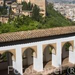 El Generalife. La Alhambra, UNESCO. Ciudad de GRANADA. Andalucia. España
