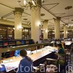 Biblioteca. Edificio de la facultad de Derecho. Ciudad de GRANADA. Andalucia. España