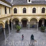 Claustro de Francisco Suarez. Edificio de la facultad de Derecho. Ciudad de GRANADA. Andalucia. España