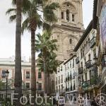 Plaza de la Romanilla y detras la catedral. GRANADA. Andalucia. España