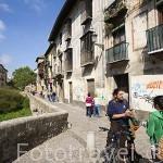 Carrera del Darro y puente de Espinosa sobre el rio Darro. Barrio del Albaycin. GRANADA. Andalucia. España