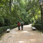 Cuesta de Gomerez. Acceso a la Alhambra. Ciudad de GRANADA. Andalucia. España