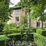 Jardines del Partal. Palacios Nazaries. La Alhambra, UNESCO. Ciudad de GRANADA. Andalucia. España