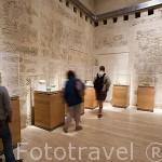Salas de exposición. Museo de la Alhambra. GRANADA. Andalucia. España