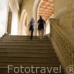 Interiores de las galerias y el patio renacentista del Palacio de Carlos V. La Alhambra, UNESCO. GRANADA. Andalucia. España
