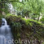 El agua es un factor muy importante en La Alhambra. Ciudad de GRANADA. Andalucia. España