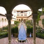 Patio de la Acequia, recorrido logitudinalmente por la acequia Real. Palacio del Generalife. La Alhambra, UNESCO. Ciuda de GRANADA. Andalucia. España