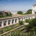 Patio de la Acequia del Palacio del Generalife. Al fondo La Alhambra, UNESCO. Ciudad de GRANADA. Andalucia. España