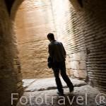 Pasadizo bajo la torre del Homenaje. Recinto fortificado de La Alcazaba. La Alhambra, UNESCO. Ciudad de GRANADA. Andalucia. España