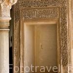 Una taca en el patio de la Acequia. Palacio del Generalife. La Alhambra, UNESCO. Ciudad de GRANADA. Andalucia. España