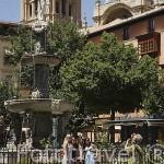 Plaza de Bib-Rambla. Ciudad de GRANADA. Andalucia. España