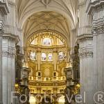 Capilla Mayor. Interior de la catedral. Ciudad de GRANADA. Andalucia. España
