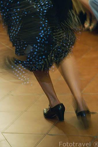 Bailando. Zambra de Maria la Canastera
