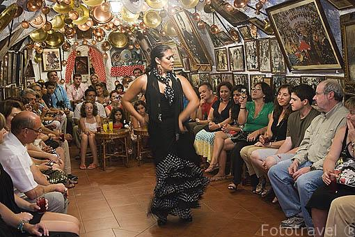 Loli Fernandez bailando flamenco. Museo- Zambra de Maria la Canastera. Ciudad de GRANADA. Andalucia. España
