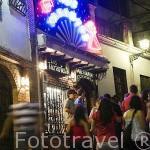 Cueva Los Tarantos. Flamenco en Camino del Sacromonte 9. Ciudad de GRANADA. Andalucia. España