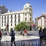 Plaza de Puerta Real. Ciudad de GRANADA. Andalucia. España
