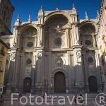 Plaza Paciegas y fachada trasera de la catedral. Ciudad de GRANADA. Andalucia. España