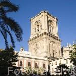 Plaza de la Romanilla y detras la catedral