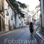 Cuesta del Chapiz. Barrio del Albaycin. Ciudad de GRANADA. Andalucia. España