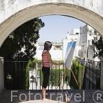 Arco y pintor- Fundación Rodriguez Acosta. Barrio del Realejo