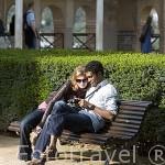Jardines del Partal. La Alhambra, UNESCO. Ciudad de GRANADA. Andalucia. España