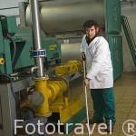 Operario limpia la sala de maquinas donde se procesa, prensa y extrae aceite de oliva. Empresa almazara GALGÓN 99, S.L. VILLANUEVA DE LA REINA. Jaen. Andalucia. España