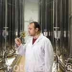 José Galvez, propietario haciendo una cata de aceite extra virgen en su bodega. Almazara de aceite GALGÓN 99, S.L. Termino de VILLANUEVA DE LA REINA. Jaen. Andalucia. España