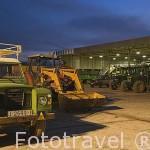 Vehiculos de todos los tamaños se dan cita para descargar las aceitunas en la almazara de aceite Cooperativa Virgen del Carmen. TORREDONJIMENO. Jaen. Andalucia. España