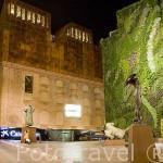 Museo Fundación La Caixa. Madrid. España